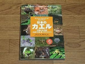 japanese-frogs-book