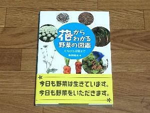 vegetables-book