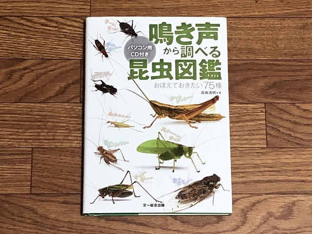 Insect-picture-book